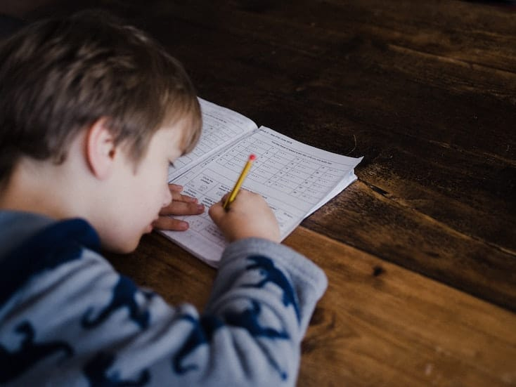 Boy studies
