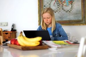 homeschooling-5121262_1280_opt