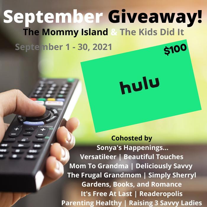 HULU $100 Banner